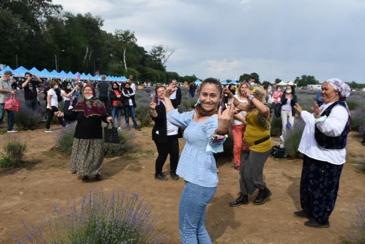 Edirne de mor tarlalar festival alanına döndü #8