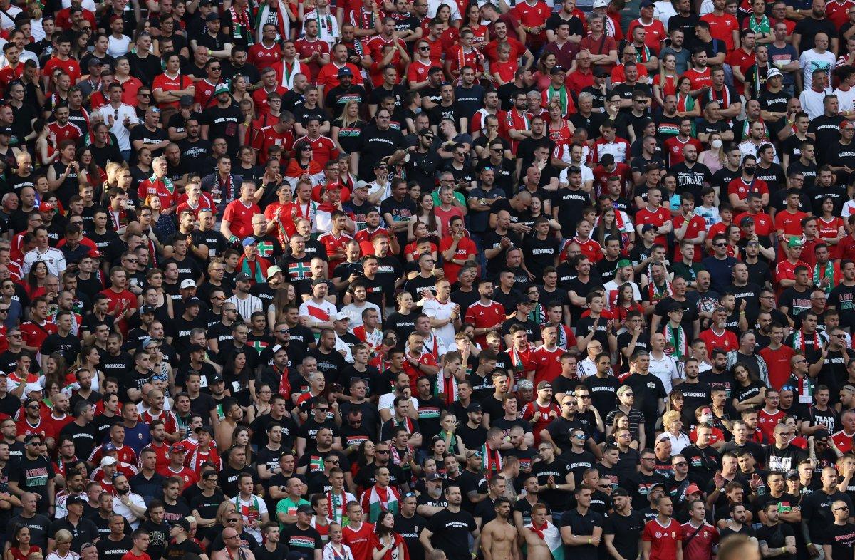 Macaristan-Portekiz maçında tribünlerde renkli görüntüler oluştu #8