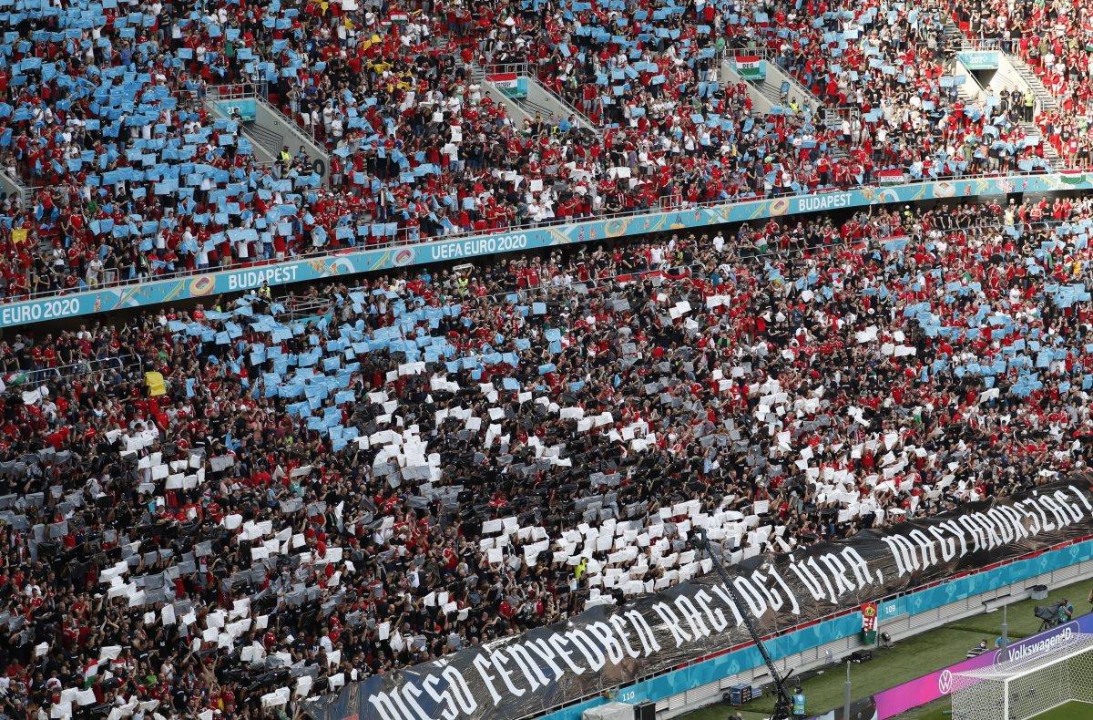 Macaristan-Portekiz maçında tribünlerde renkli görüntüler oluştu #3