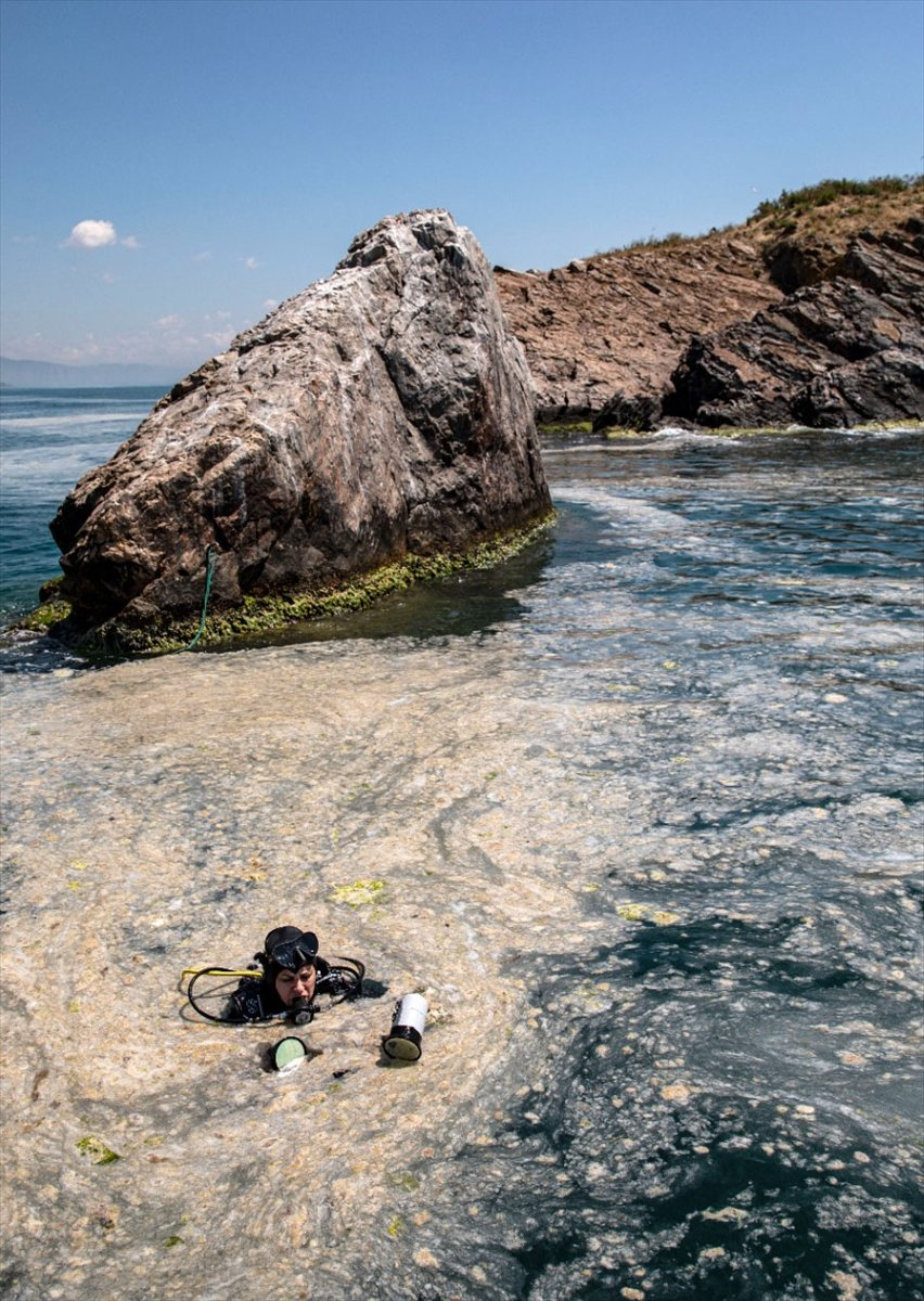 Marmara Denizi dibindeki yoğun müsilajın son durumu #5