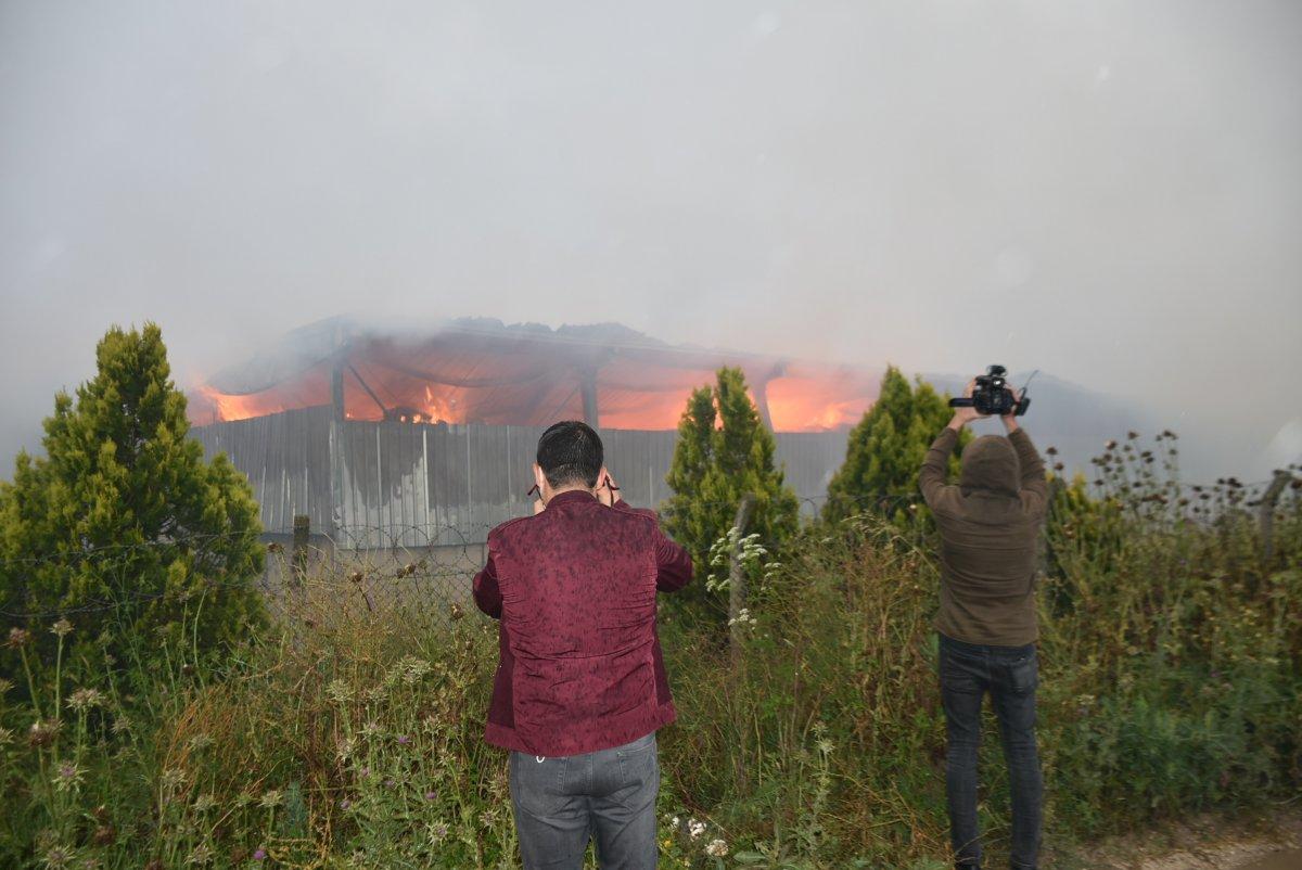 Kırklareli de binlerce büyükbaş hayvanın bulunduğu çiftliğin yem deposu yandı #2