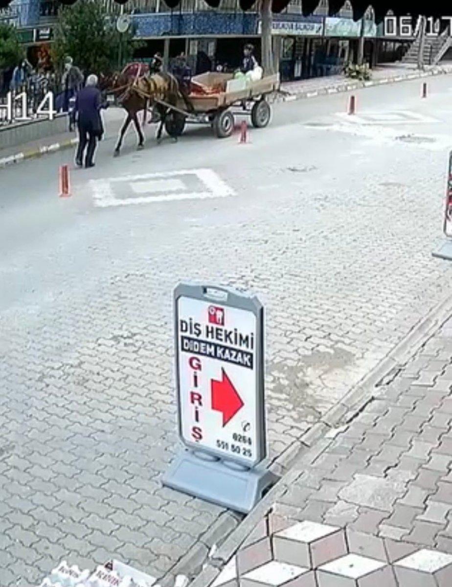 Sakarya'da 84 yaşındaki adama at arabası çarptı #1
