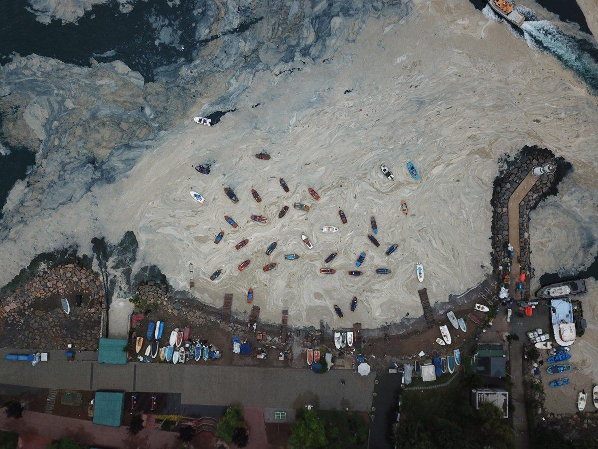 İzmit Körfezi nde temizlik sonrası yine müsilaj #1