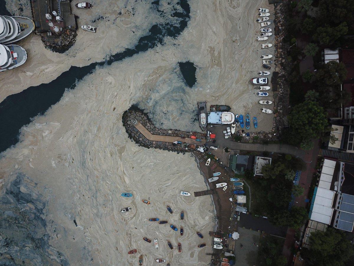 İzmit Körfezi nde temizlik sonrası yine müsilaj #8