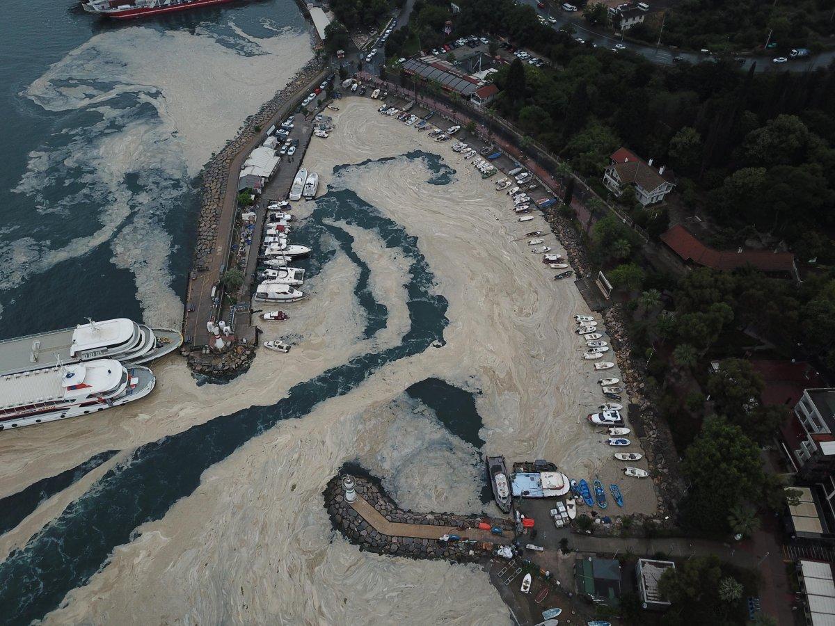 İzmit Körfezi nde temizlik sonrası yine müsilaj #4