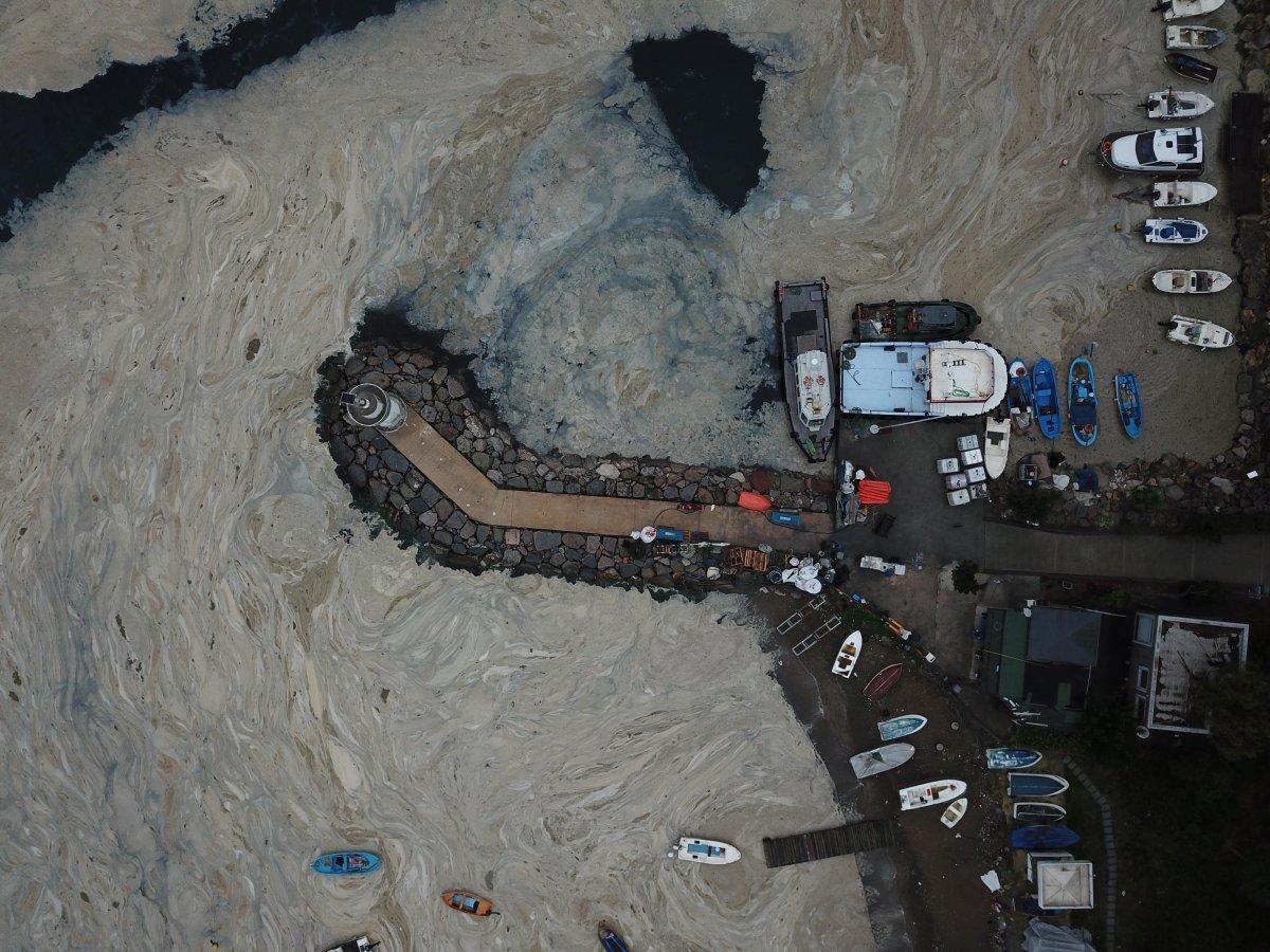İzmit Körfezi nde temizlik sonrası yine müsilaj #3