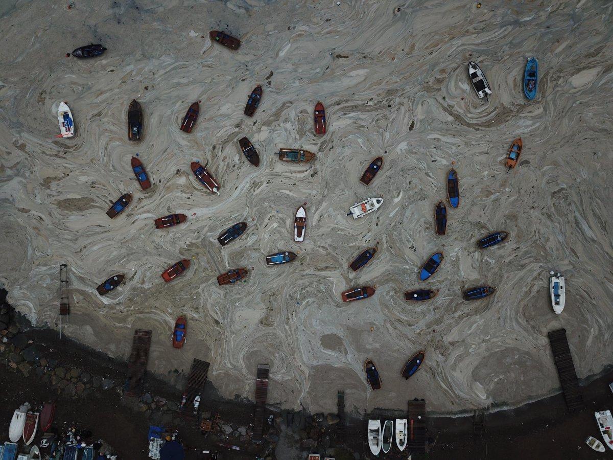 İzmit Körfezi nde temizlik sonrası yine müsilaj #9