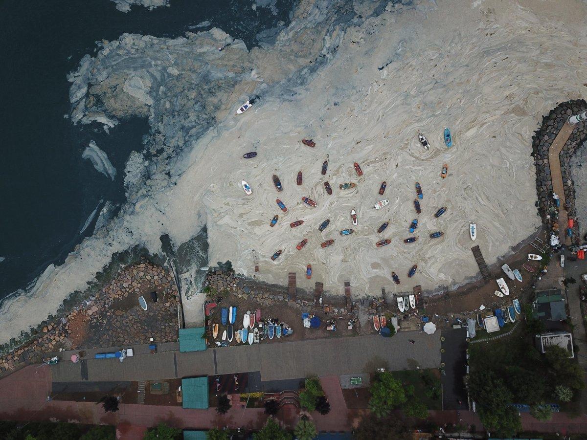 İzmit Körfezi nde temizlik sonrası yine müsilaj #6