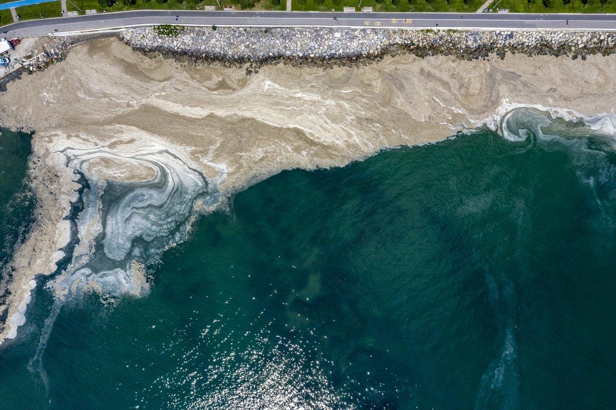 Murat Kurum: 11 günde 4 bin 202 metreküp müsilaj temizlendi #2