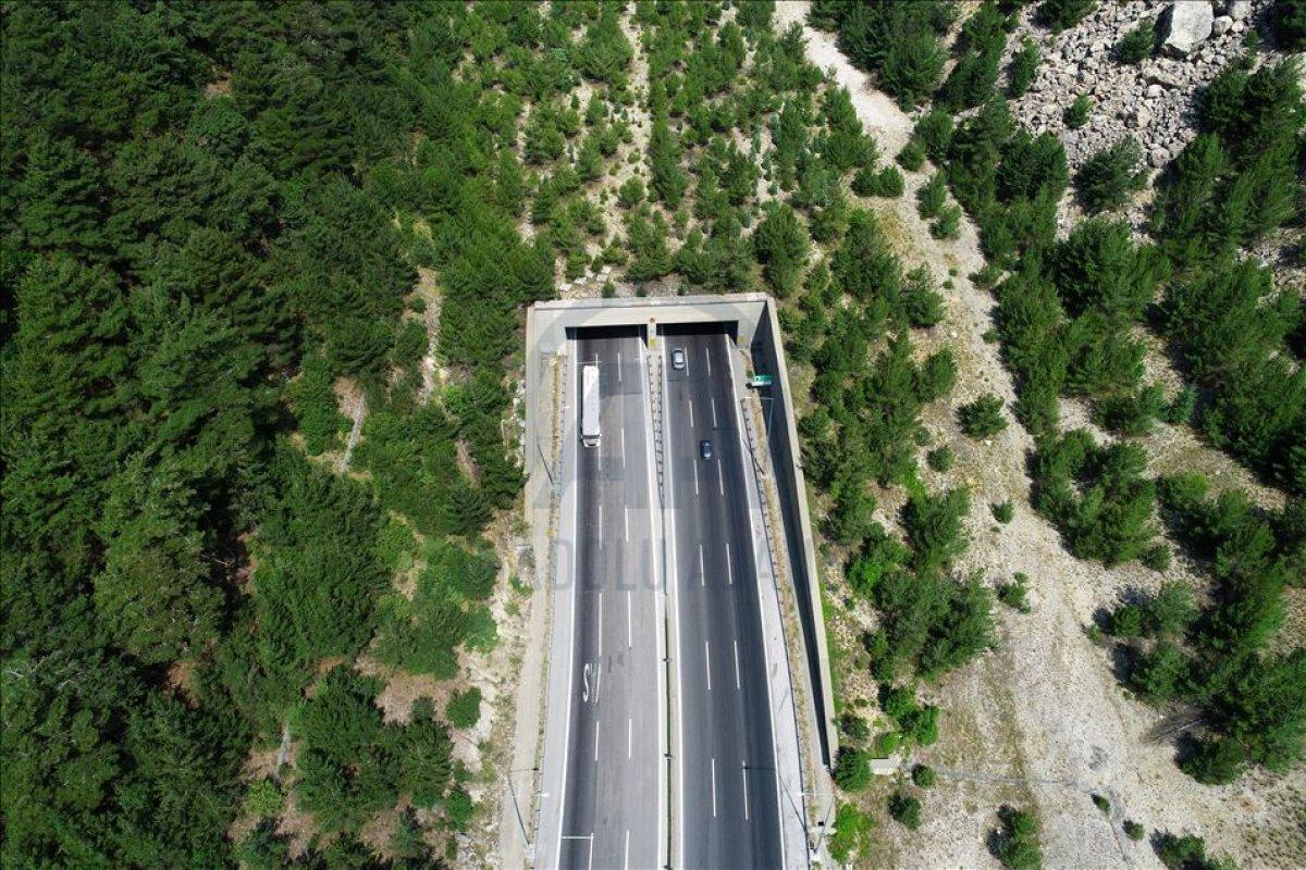 Ağaçlandırılan yollarla, yıllık 1 milyon ton emisyon azaltımı sağlandı #4