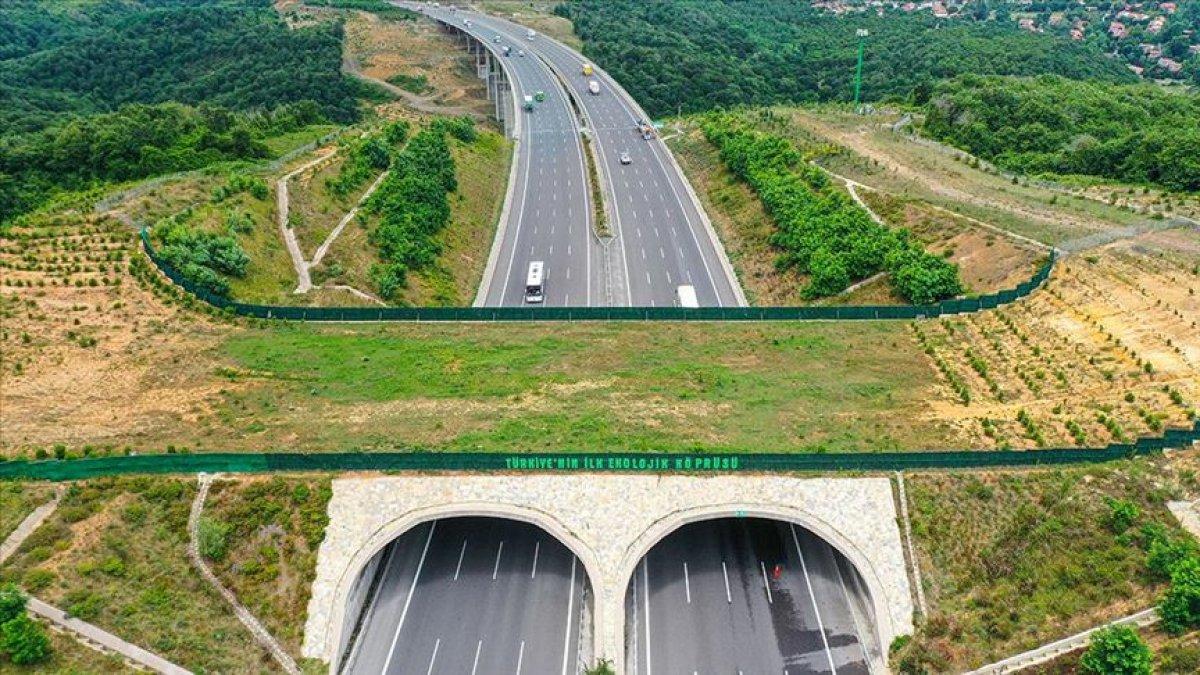 Ağaçlandırılan yollarla, yıllık 1 milyon ton emisyon azaltımı sağlandı #2