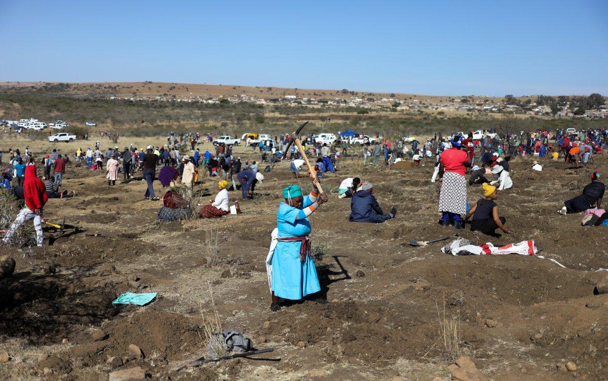 Güney Afrika da keşfedilen taşların kuvars kristalleri olduğu belirlendi #5