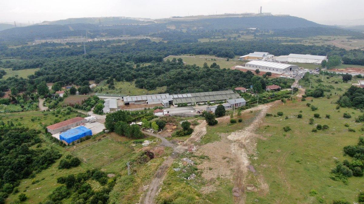 Kocaeli'de Lütfü Türkkan'ın kaçak çiftliğinde tahliye çalışmaları #2