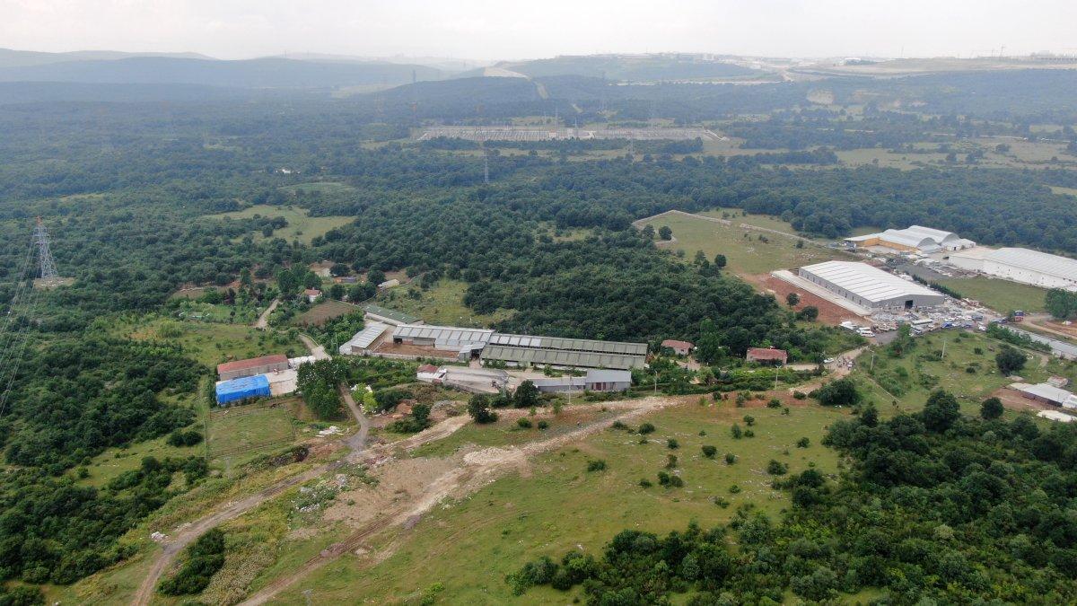 Kocaeli'de Lütfü Türkkan'ın kaçak çiftliğinde tahliye çalışmaları #1