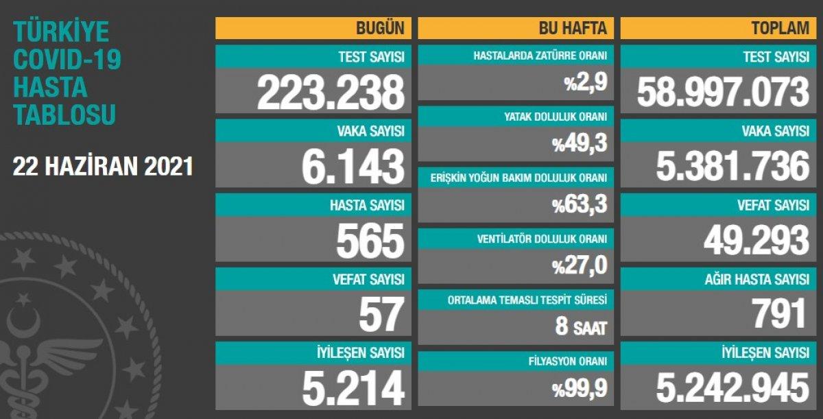 22 Haziran Türkiye de koronavirüs tablosu #1