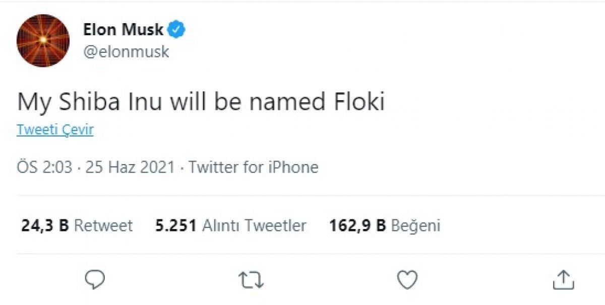 Elon Musk tweetledi, herkes merak etti: Floki nedir? #1