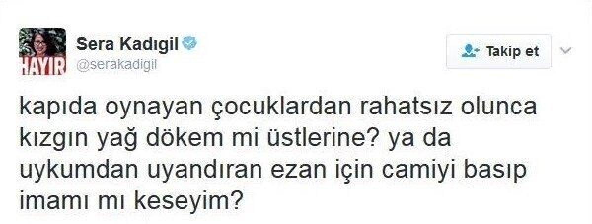 CHP li Saliha Sera Kadıgil Sütlü, partisinden istifa etti #3