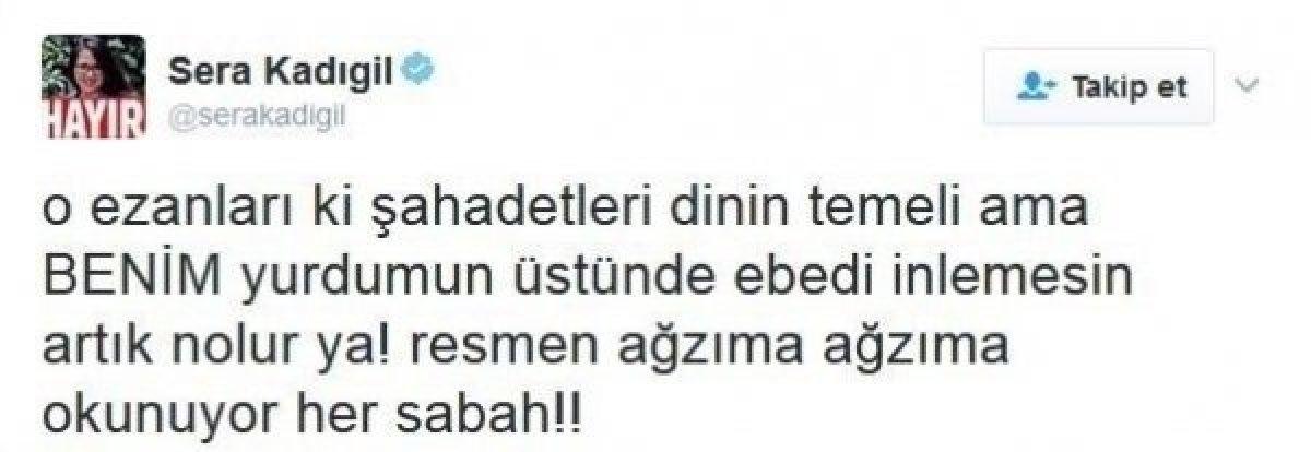 CHP li Saliha Sera Kadıgil Sütlü, partisinden istifa etti #2