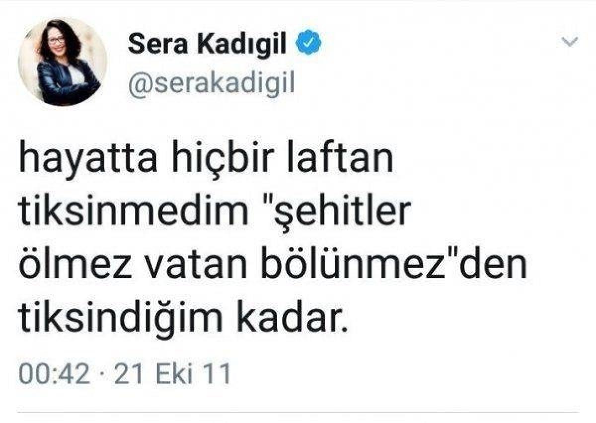 CHP li Saliha Sera Kadıgil Sütlü, partisinden istifa etti #4