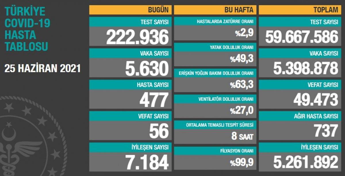 25 Haziran Türkiye de koronavirüs tablosu #1