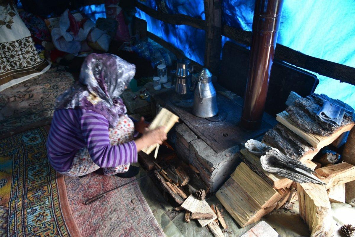 Balıkesir'de havalar ısındı, yaylaya göç başladı #8