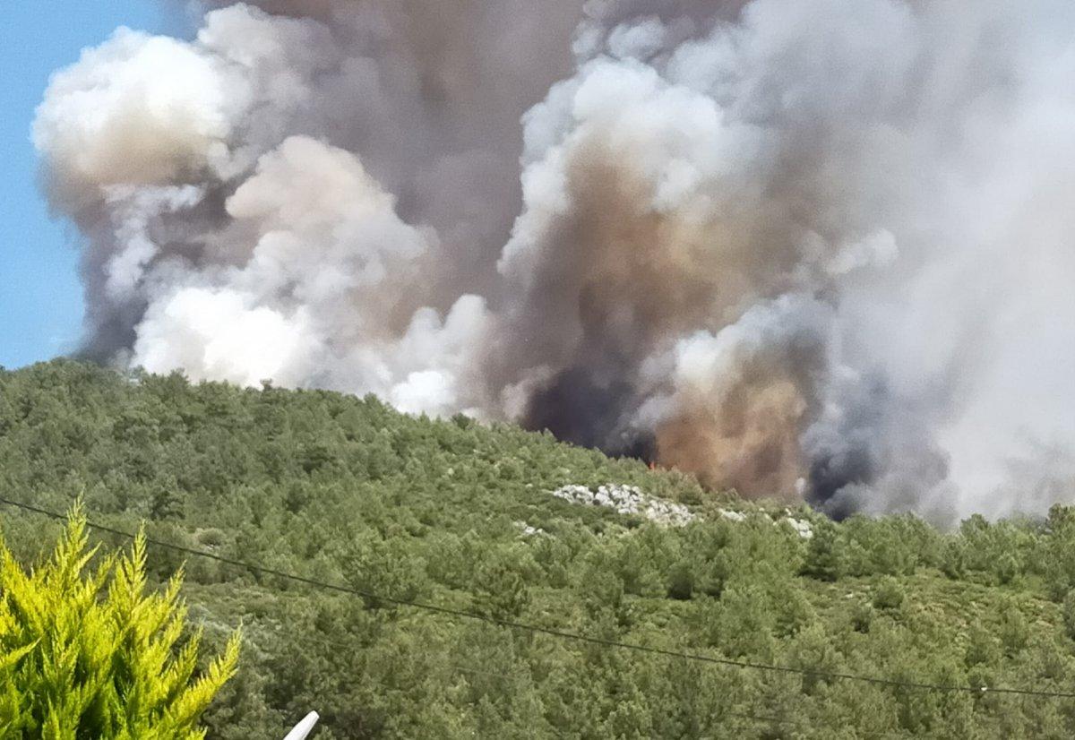 Kaş ta orman yangını çıktı #4