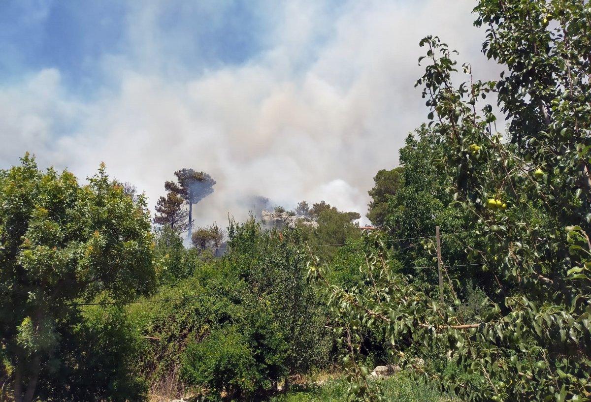 Kaş ta orman yangını çıktı #2