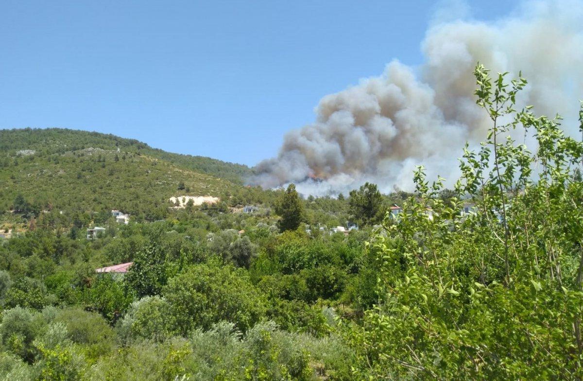 Kaş ta orman yangını çıktı #1