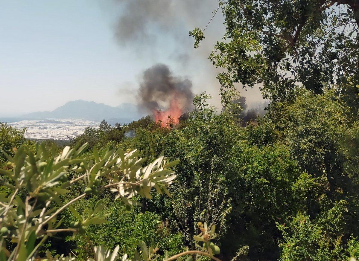 Kaş ta orman yangını çıktı #3