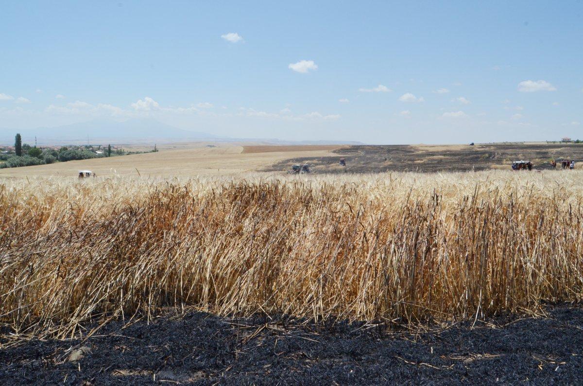 Aksaray da arpa ekili alan yandı  #5