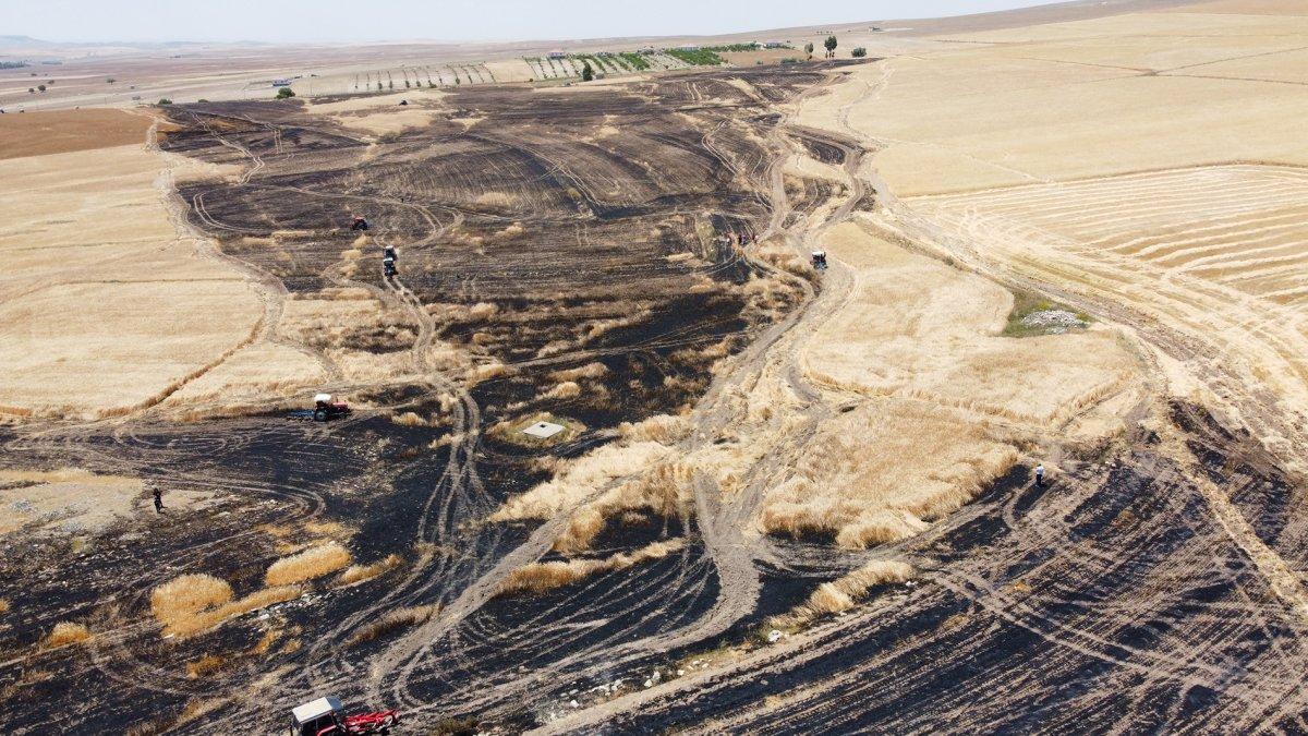 Aksaray da arpa ekili alan yandı  #1