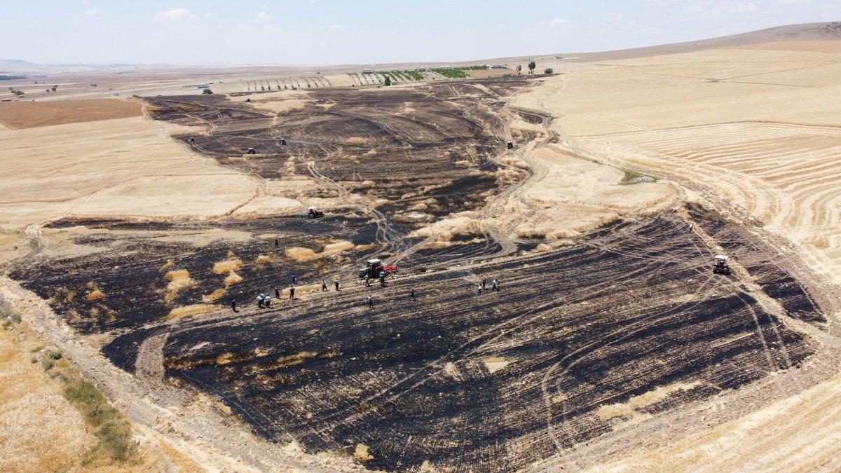 Aksaray da arpa ekili alan yandı  #2