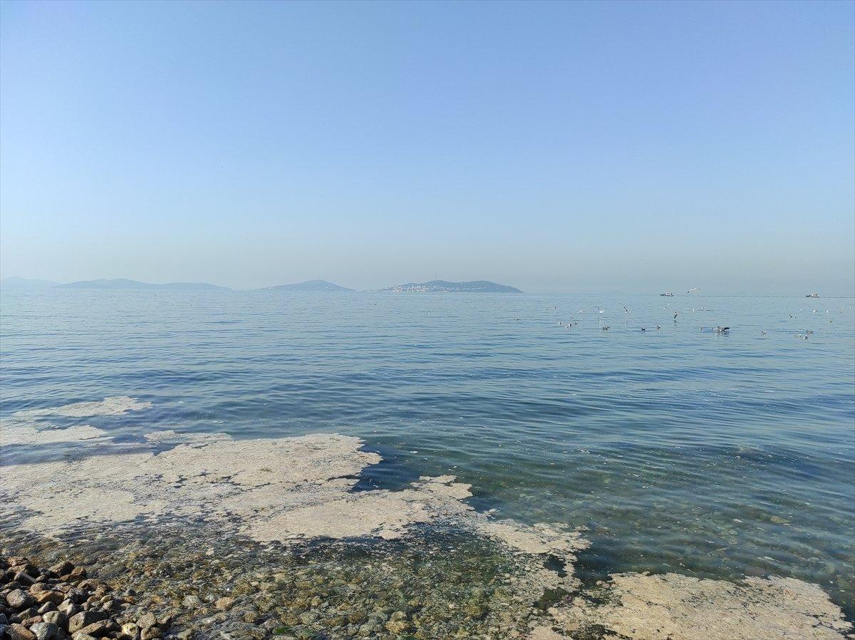 İstanbul da müsilaj yoğunluğu azalıyor #2