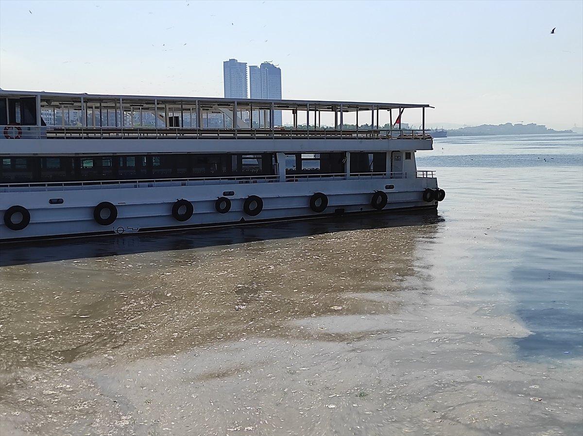 İstanbul da müsilaj yoğunluğu azalıyor #6