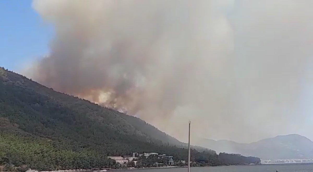 Marmaris te orman yangını #5