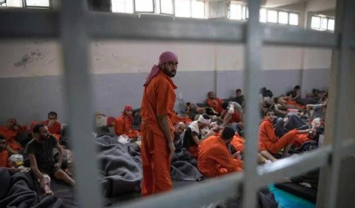 Esad rejimi, iç savaşta en az 14 bin kişiyi işkenceyle öldürdü #3