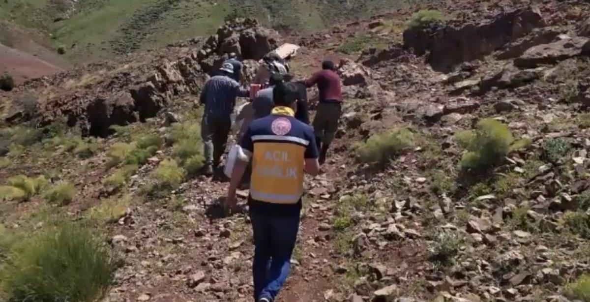 Bingöl'de hastalanan adam, ambulans helikopterine eşek sırtında taşındı #2