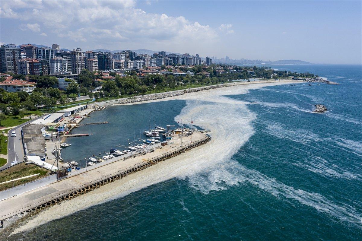 Marmara'da toplanan müsilaj miktarı 7 bin 932 metreküp oldu #4