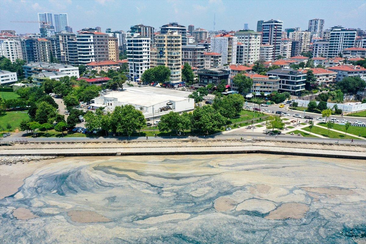 Marmara'da toplanan müsilaj miktarı 7 bin 932 metreküp oldu #6