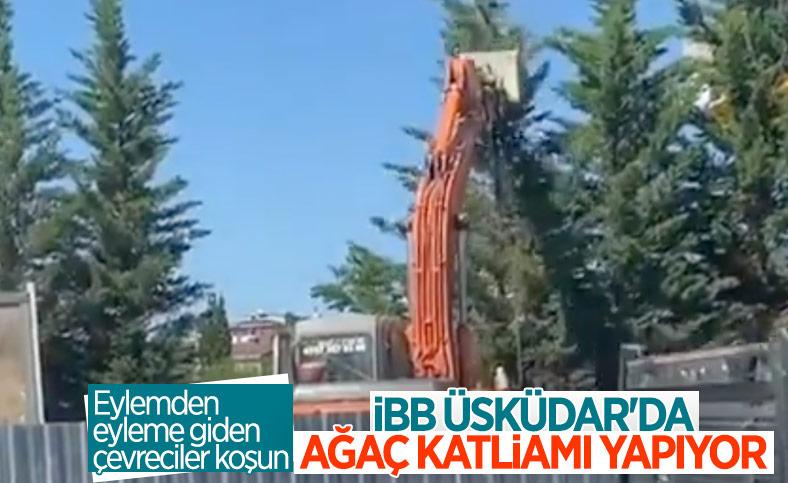 İBB'den Üsküdar-Sultanbeyli metro hattında ağaç katliamı