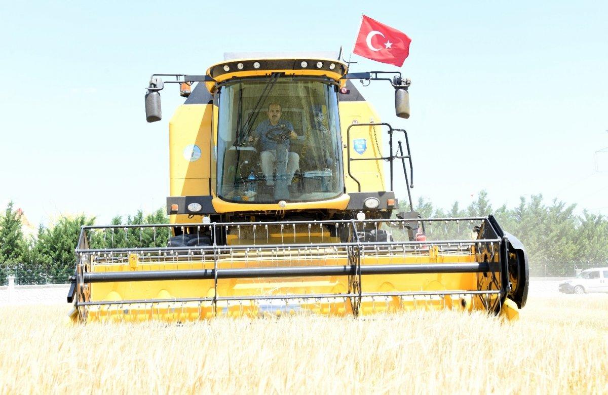 Konya da atıl arazi ekildi, geliri sosyal yardıma gitti #2