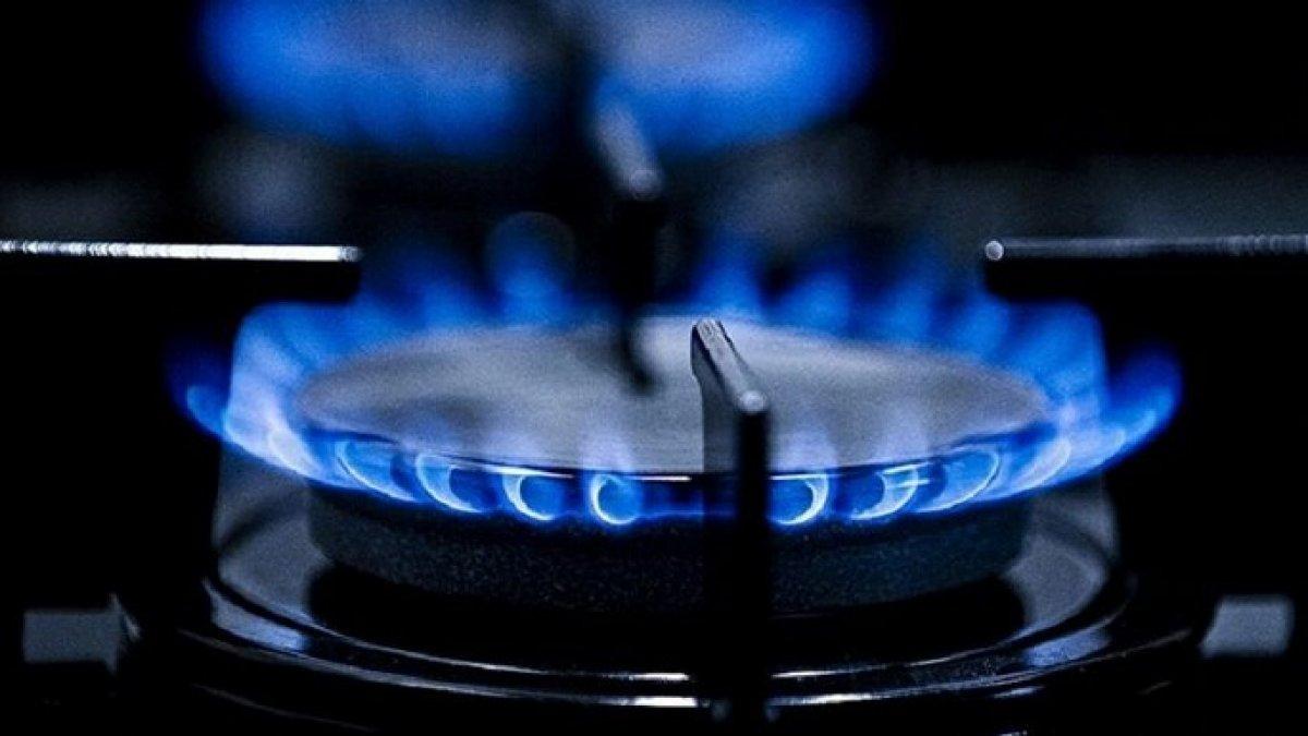 Elektrik fiyatlarına yüzde 15, doğalgaza yüzde 12 zam #2