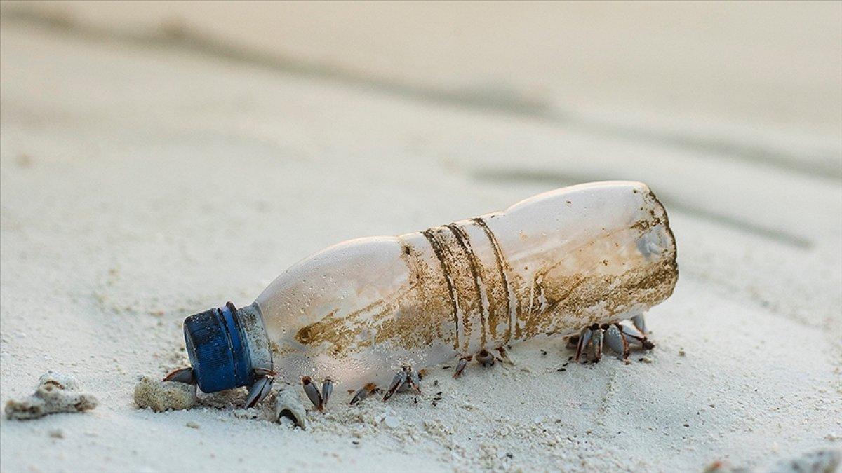 AB de tek kullanımlık birçok plastik ürün artık kullanılamayacak #2