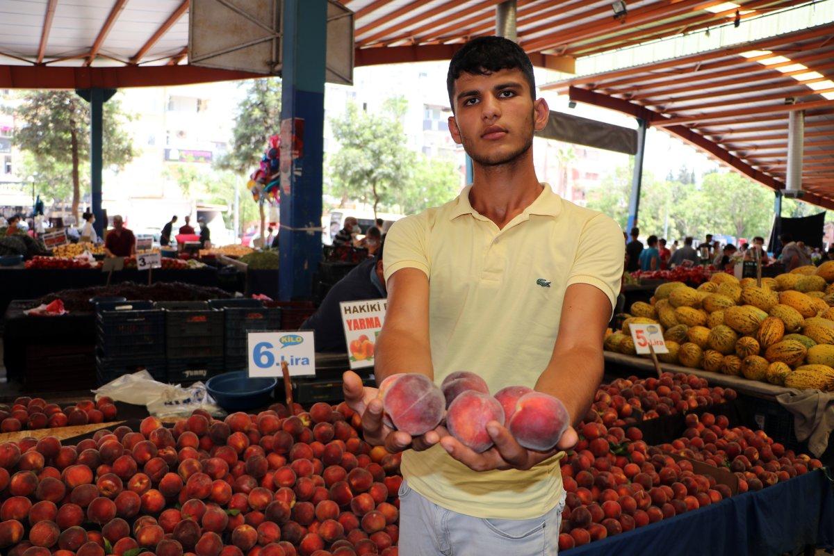Adana da sıcaklık 40 derece: Meyve ve sebzeler zarar gördü  #4