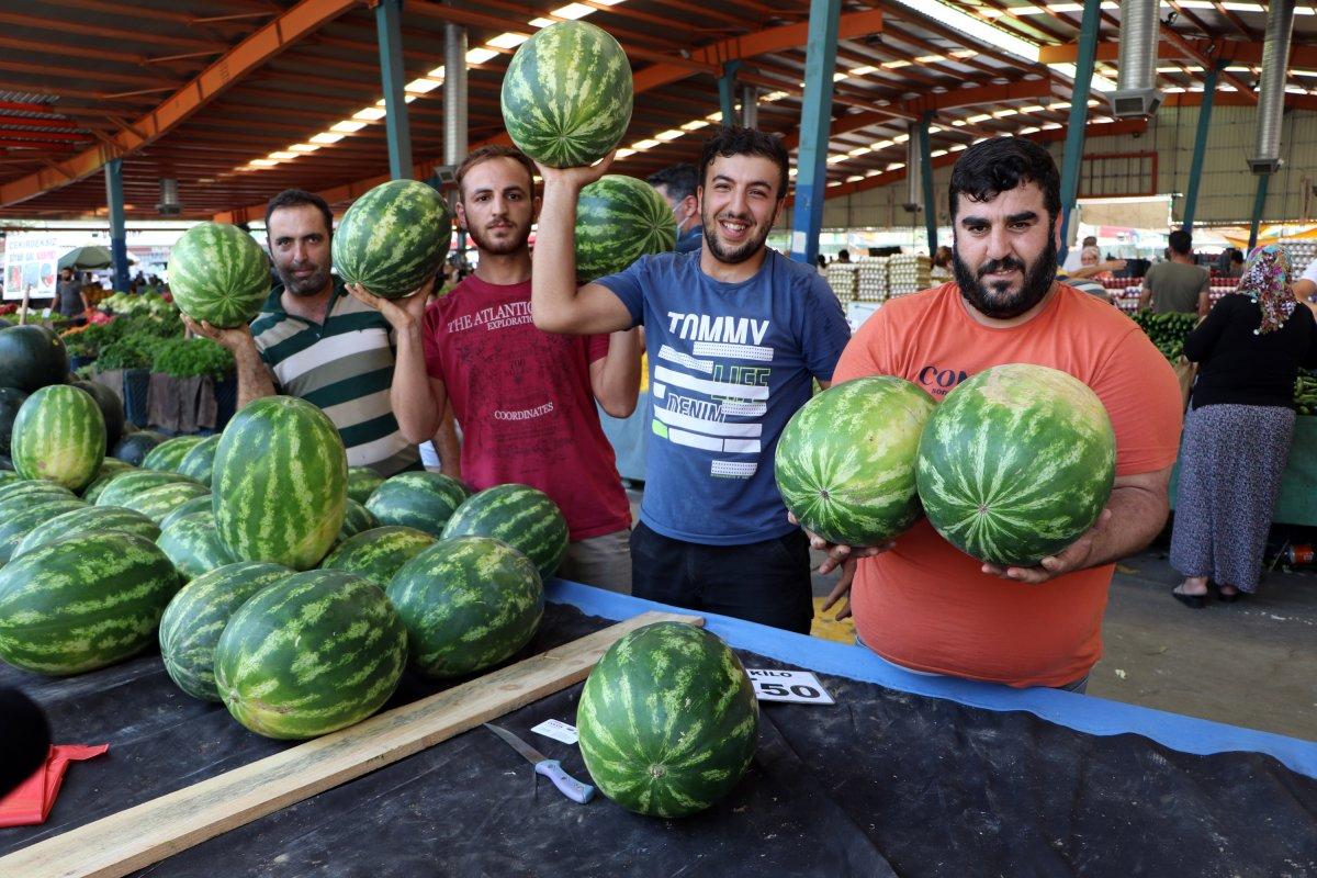 Adana da sıcaklık 40 derece: Meyve ve sebzeler zarar gördü  #8