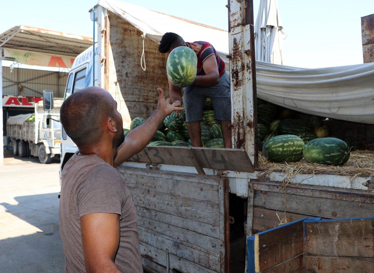 Adana da sıcaklık 40 derece: Meyve ve sebzeler zarar gördü  #2
