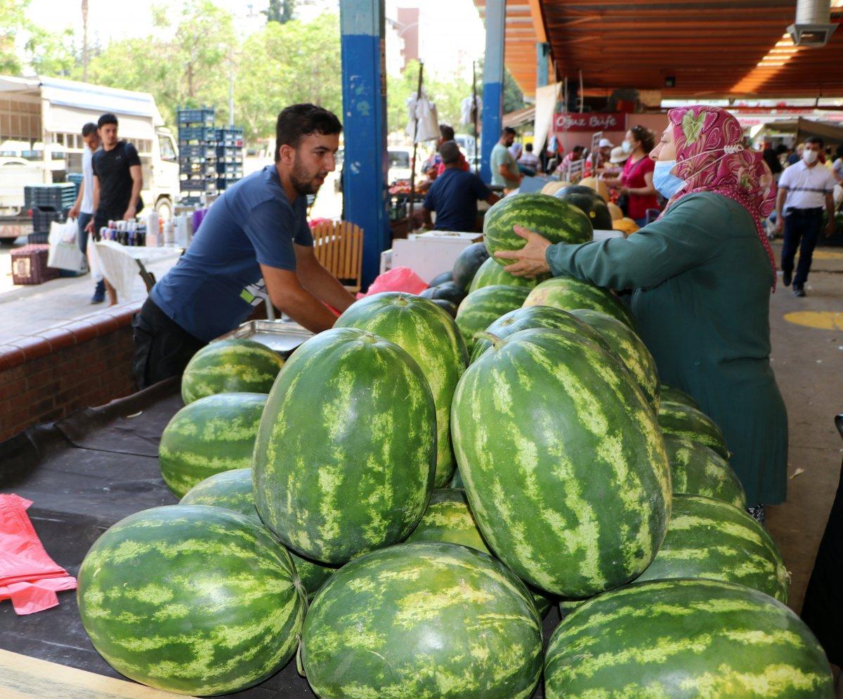 Adana da sıcaklık 40 derece: Meyve ve sebzeler zarar gördü  #7