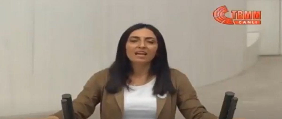 CHP li Nurhayat Altaca Kayışoğlu, Meclis kürsüsünde türkü söyledi #1