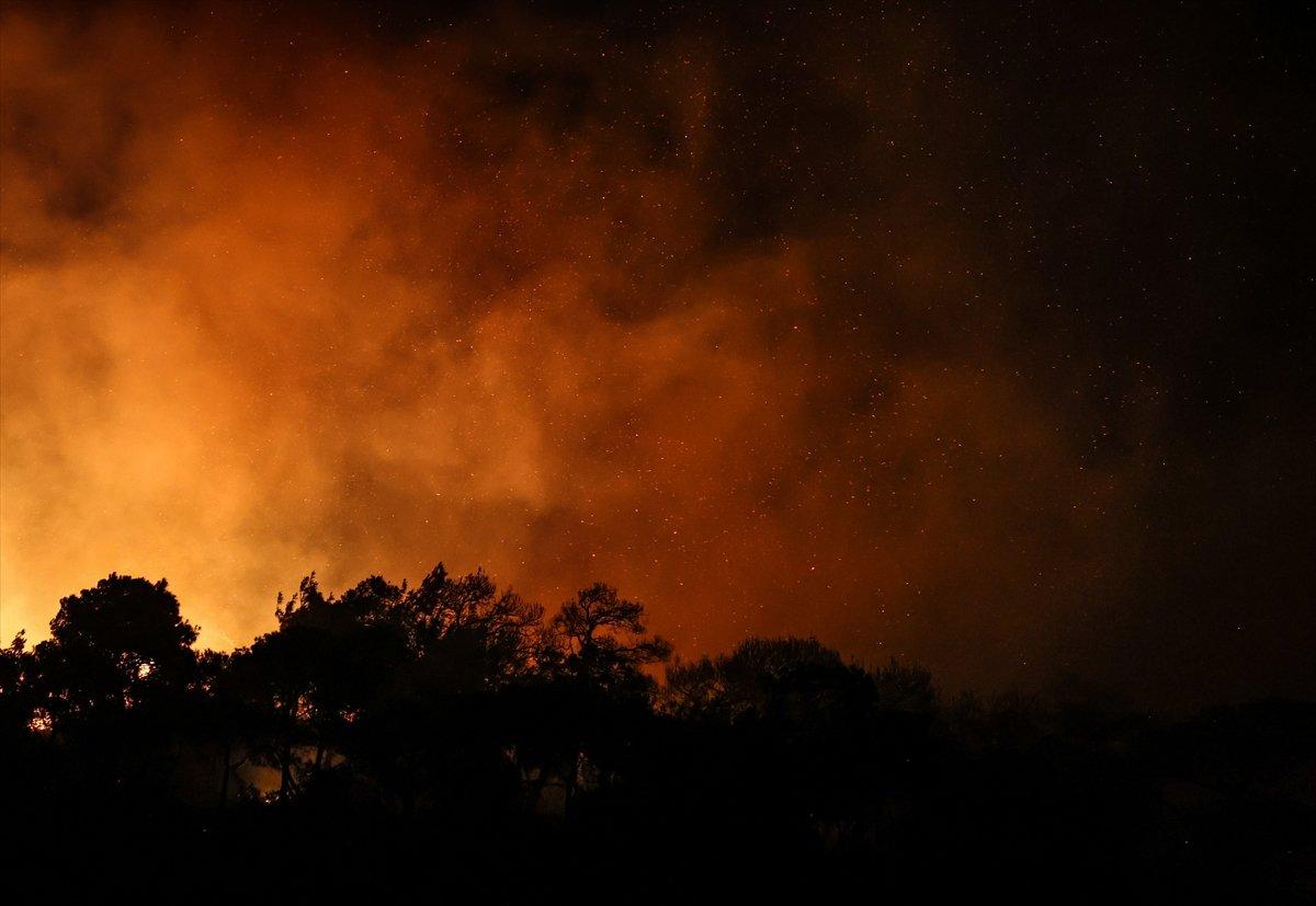 Foça da orman yangını #4
