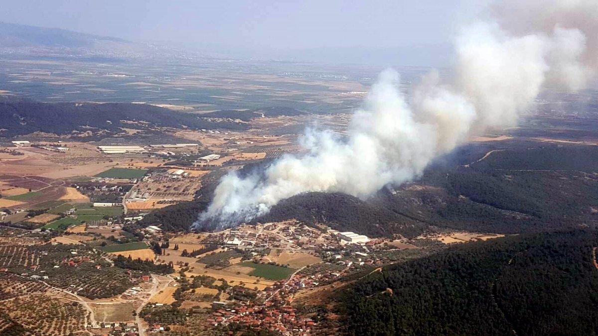 Foça da orman yangını #12